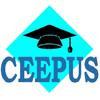 Ceepus freemover ösztöndíj  hallgatóknak, oktatóknak